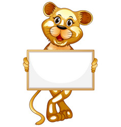 Blank sign template with cute tiger on white vector
