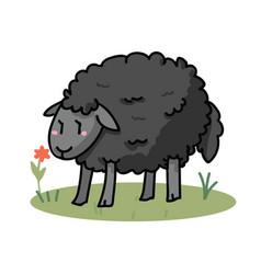 Cute black sheep in a field cartoon vector