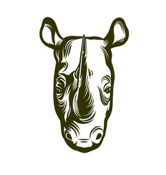 head african rhino vector image