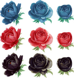 high quality watercolor peonies collection vector image