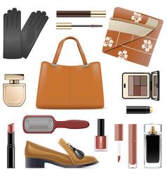 autumn female accessories vector image