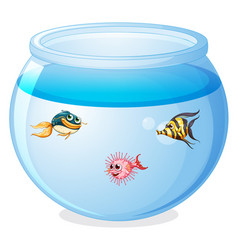Cute fishes in tank cartoon isolated vector
