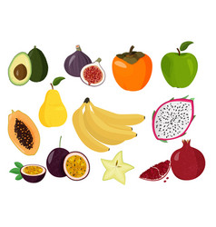 Fresh fruits collection set sweet vector