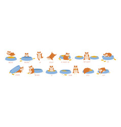 set hamster demonstrating english prepositions vector image