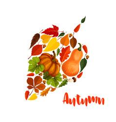 Autumn pumpkin leaf foliage greeting poster vector
