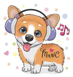 Cute cartoon corgi dog with headphones vector