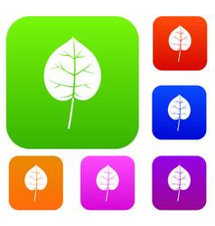 linden leaf set color collection vector image