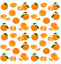 mandarin tangerine clementine with leaves vector image