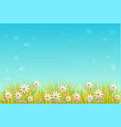 spring grass and flowers border on blue sky vector image