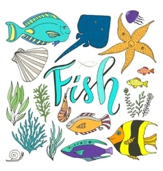 fish set Hand drawn marine with colorful vector image vector image
