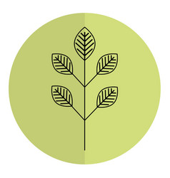 leafs plant ecology icon vector image