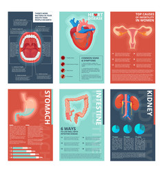 medical infographic pages health digestive vector image