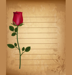 Red realistic rose on old lined paper parchment vector