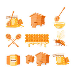 set elements honey concept vector image