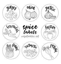 Spices herbs labels Contour vegetables set vector