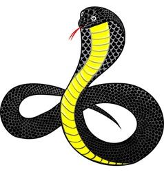 cobra vector image