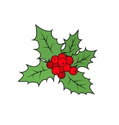 Christmas Holly Berry Isolated on White vector image