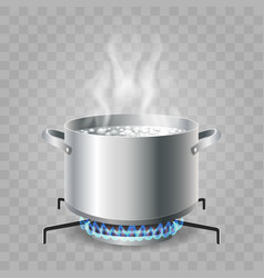 Cooking boiling water vector