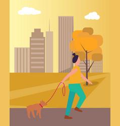 girl walking dog in park on vector image