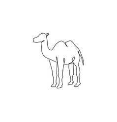 One continuous line drawing arabian desert vector