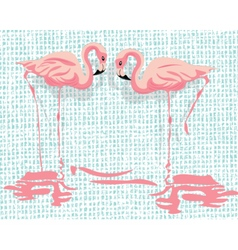 Pink Flamingo birds vector