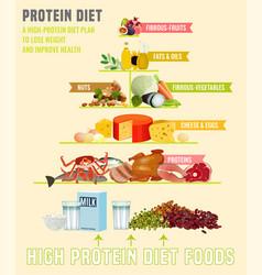 Protein diet poster vector