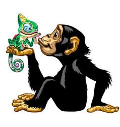 cartoon chimp holding a chameleon vector image