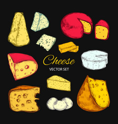 Cheese collection hand drawn vector