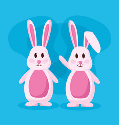 cute rabbits couple vector image