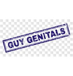 Grunge guy genitals rectangle stamp vector