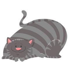 Happy tabby cat cartoon animal character vector