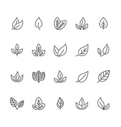leaf flat line icons plant tree leaves vector image