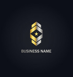 square abstract shape star company gold logo vector image