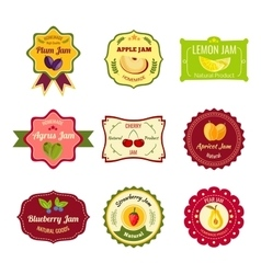 Natural Jam Colorful Labels vector image vector image
