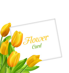 nature flower card with tulips invitation for vector image vector image