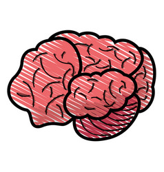 drawing brain human idea concept vector image