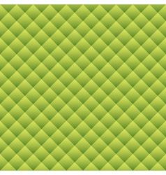 Green snake skin vector image vector image