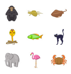 beautiful animal icons set cartoon style vector image