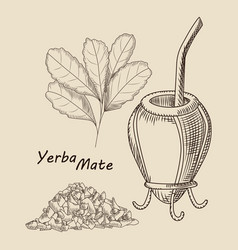 Concept calabash and bombilla for yerba mate vector