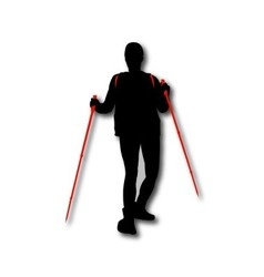Silhouette of hiker with backpack and sticks vector image