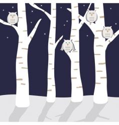 snowy owls vector image