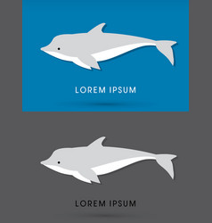 dolphin swimming vector image vector image