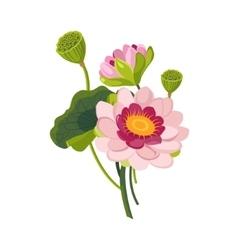 Pink Garden Flower Hand Drawn Realistic vector image vector image
