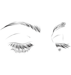 closed female eyes drawing long eyelashes vector image