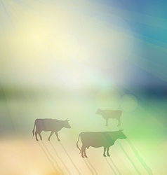 cow set silhouette on sunny sky and grass vector image