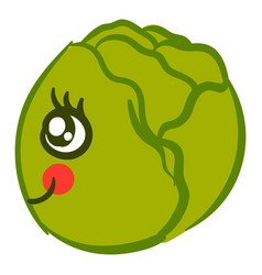 Cute cabbage on white background vector