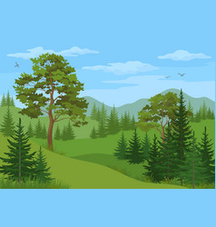Mountain landscape with trees vector
