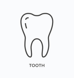 Tooth flat line icon outline vector