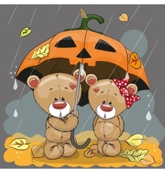 two bears vector image