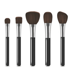 realistic detailed cosmetic brushes set vector image